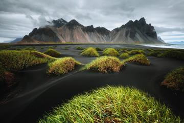 壁紙(ウォールミューラル) - Majestic landscape on sunny day. Location Stokksnes cape, Vestrahorn (Batman Mount), Iceland.