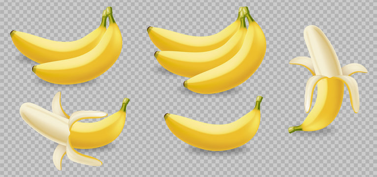 Banana fruits isolated on transparent Vector realistic poster template. Mock up for label designs