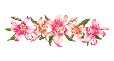 Beautiful pink lily. Bouquet of flowers. Floral print. Marker drawing. Watercolor painting. Wedding and birthday festive composition. Greeting card. Flower painted background. Hand drawn illustration.