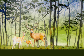Paintings watercolor landscape of animal, deer family concept.