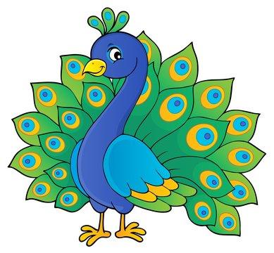 Peacock theme image 1