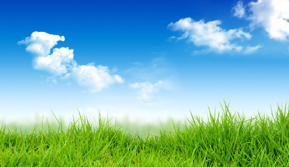 Foto op Plexiglas Weide, Moeras Spring nature background with grass and blue sky. Art abstract spring or summer background. Illustration stock.