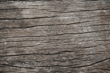 Texture of wood background.Vintage concept.