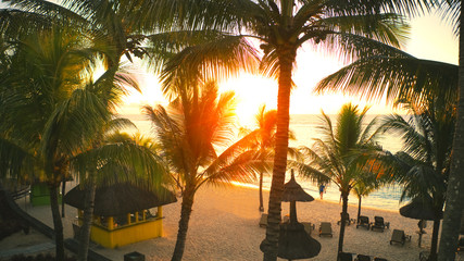 sunset on the beach with palm trees
