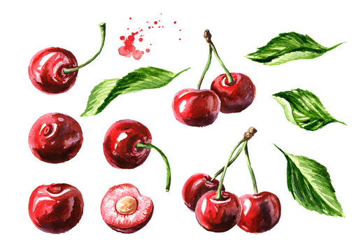 Fresh ripe cherry with leaves elements set. Watercolor hand drawn illustration, isolated on white background