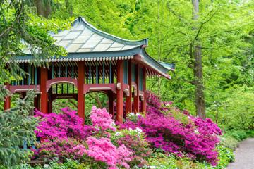 Japanisches Teehaus um geben von blühenden Azaleen