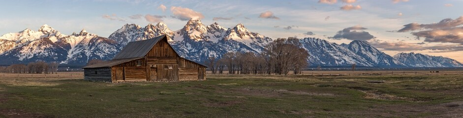 Panorama of the infamous T.A. Moulton Barn during sunrise in Mormon Row, Grand Teton National Park, Wyoming.
