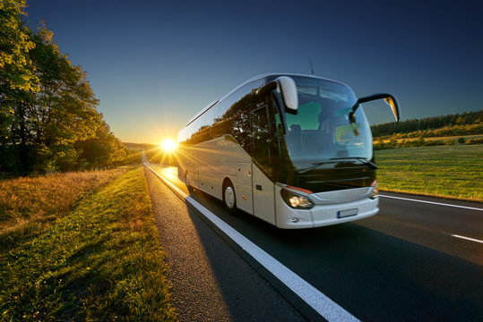 White bus traveling on the asphalt road around line of trees in rural landscape at sunset