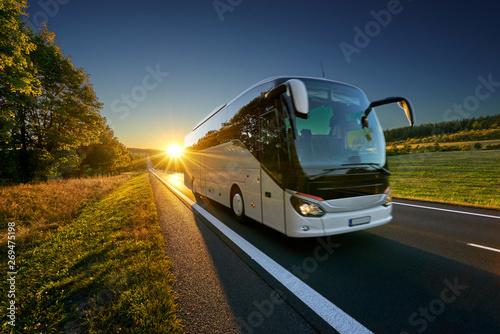 Fotobehang White bus traveling on the asphalt road around line of trees in rural landscape at sunset