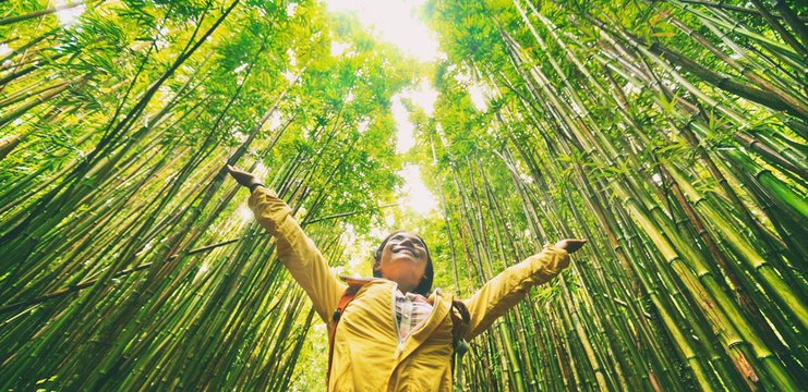 Sustainable eco-friendly travel tourist hiker walking in natural bamboo forest happy with arms up in the air enjoying healthy environment renewable resources.