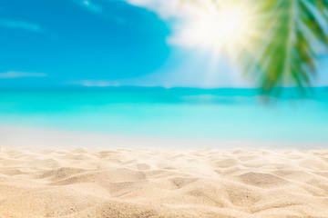Sunny tropical beach with palm trees and turquoise water, caribbean island vacation, hot summer day