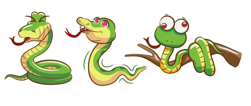 snake vector graphic clipart design set