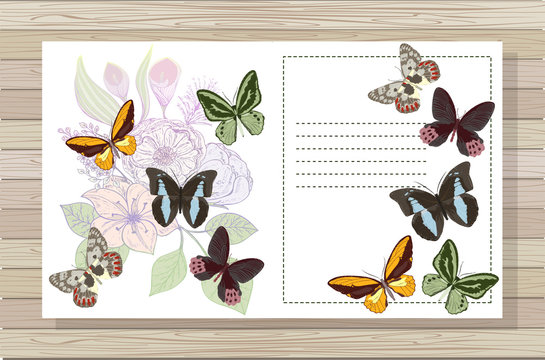 Beautiful background with flowers and butterflies. Space for text. Vector illustration. EPS 10