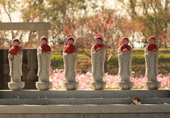 墓地のお地蔵様 (六地蔵)たちと背後のコスモス畑の風景です