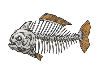 Piranha fish skeleton animal color sketch engraving vector illustration. Scratch board style imitation. Black and white hand drawn image.