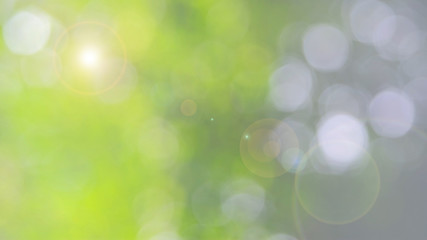Defocused abstract nature background with green leaves and bokeh lights. Royalty high-quality free stock  photo image of natural blurred bokeh background from leaf and tree effects bokeh bubble light