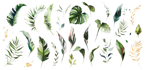 set watercolor leaves - monstera, banana palm, fern. herbal illustration. Botanic tropic composition.  Exotic modern design Wall mural