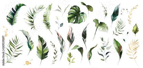 Wall mural set watercolor leaves - monstera, banana palm, fern. herbal illustration. Botanic tropic composition.  Exotic modern design