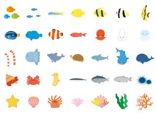 海の生き物4
