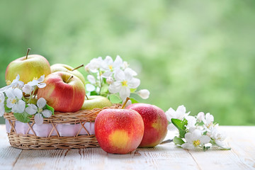 Ripe red apples and flower Apple on natural summer background. Green Apples with Leaf and Flowers on garden. Harvest time, farm fresh product. copy space. soft focus Wall mural