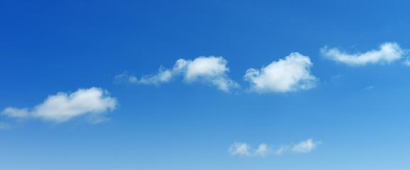 Wall Mural - clouds in sky