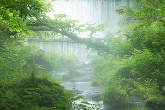 Beautiful misty mountain stream at Kitanisawa in summer, Daisen, Tottori, Japan.