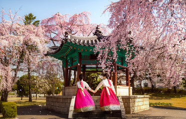 Foto op Textielframe Seoel Korean lady in hanbok dress walking on pavilion in Seoul National Cemetery, Seoul city, South Kirea