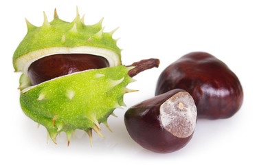 Fototapete - Fresh chestnut on white background