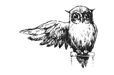 Photo Stands Owls cartoon Owl with wings and big eyes. Pencil illustration.