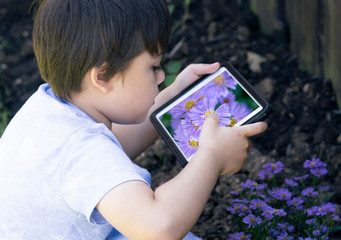 Active little boy holding a tablet taking photograph purple aster flower in the garden, Cute child photographing flowers, Kid learning about natural,Children Play and learn concept