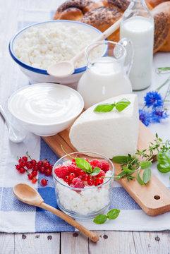 Cottage cheese, sour cream, cheese, cream, yogurt and milk