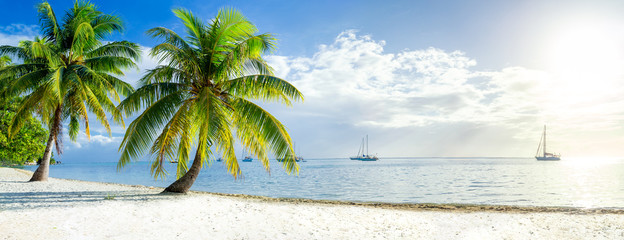 Wall Mural - Summer vacation on a tropical island with beautiful beach