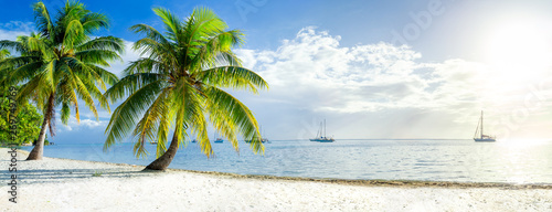 Wall mural Summer vacation on a tropical island with beautiful beach