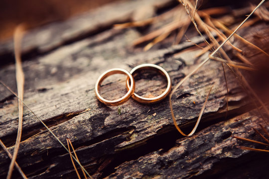 wedding rings. jewelery in white and yellow gold. Wedding ring on the wooden texture. wooden stub