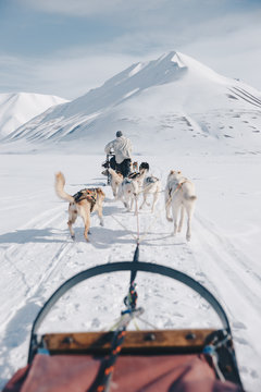 dogsledding in Svalbard with a snow covered mountain in the background