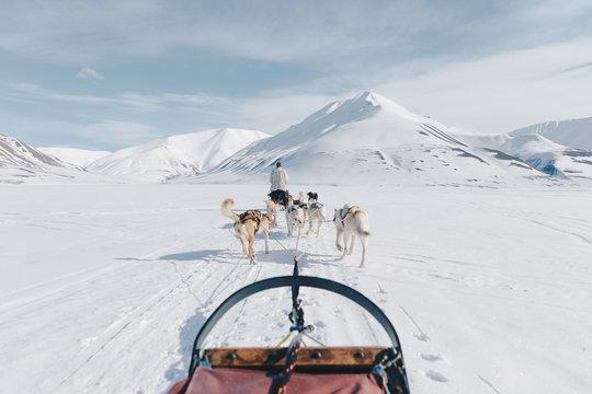 Dogsledding in Svalbard, Norway