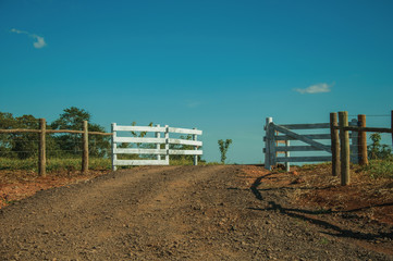 Farm gate with cattle guard and barbed wire fence