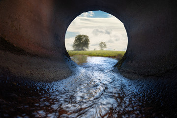 Sewer pipe. Inside view. Meadow and tree in the background.