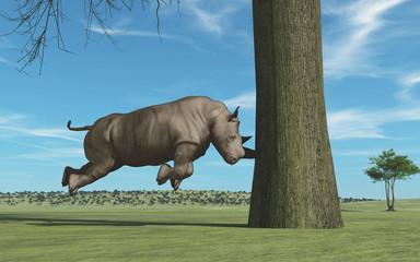 Rhino in tree