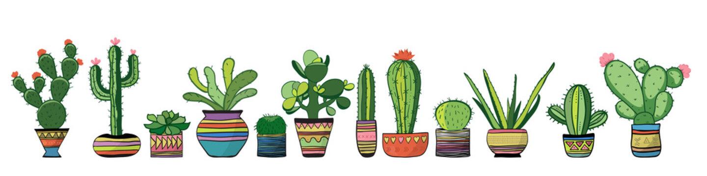 Cozy cacti set. Vector