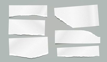 Ripped, torn note, notebook grainy paper strips stuck on grey background. Vector illustration