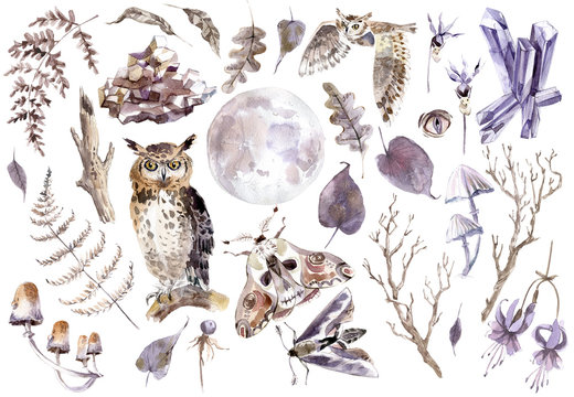 Watercolor mystical collection. Owls, crystal, butterflies, mushrooms and plants.