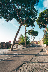 Wall Mural - A typical landscape of Rome with tall trees and ancient buildings