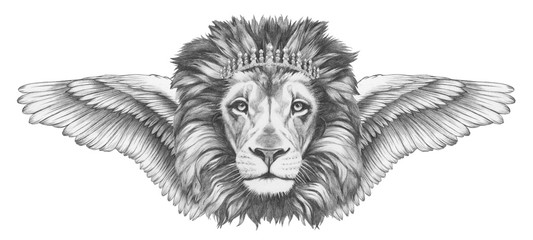 Portrait of Lion with wings. Hand-drawn illustration.
