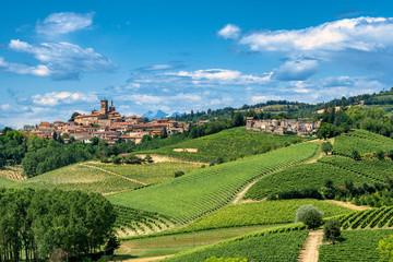 Fotomurales - Monferrato (Italy)