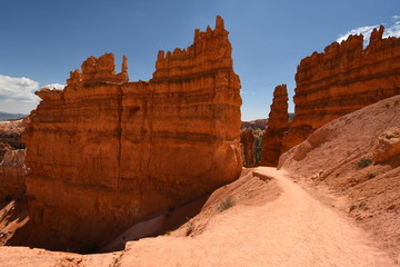 Recess Fitting Magenta landscape on the bryce canyon in the united states of america