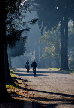 A cyclist and a pedestrian silhouetted in a street lined with tall trees image with copy space in portrait format