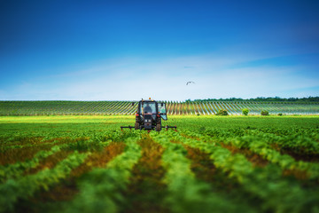 Wall Mural - Farmer in tractor preparing land with cultivator in spring