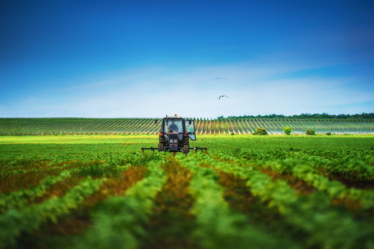 Farmer in tractor preparing land with cultivator in spring