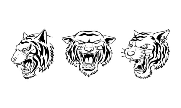 set of  hand drawn illustration of angry Tiger head
